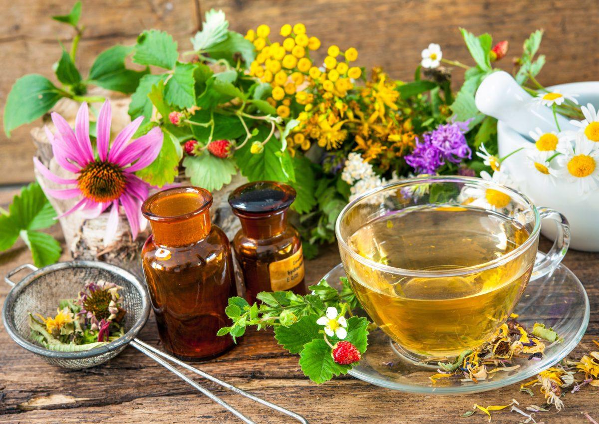 ziołolecznictwo - sposób na grypę